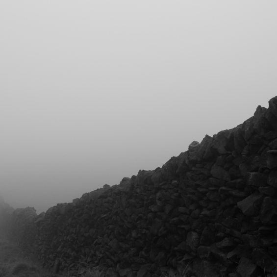 Drystone Wall in Mist.jpg