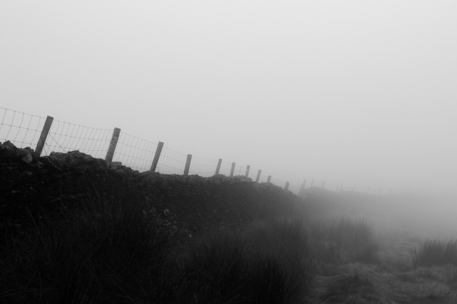 Drystone Wall in Fog