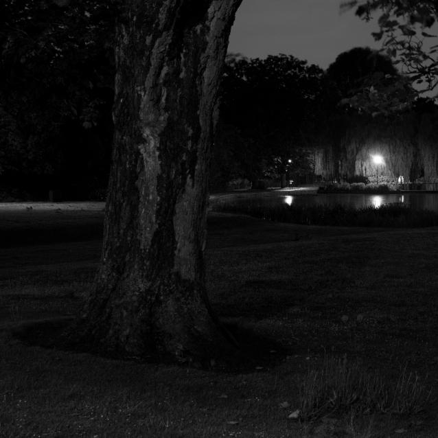 Campus at Night, 02