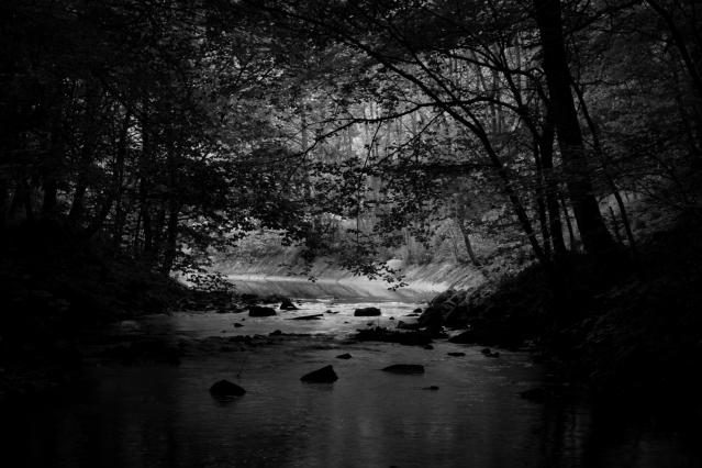 Skipton Woods Beck (Flickr).jpg