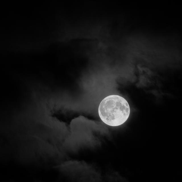 Moon, 01 (Flickr).jpg