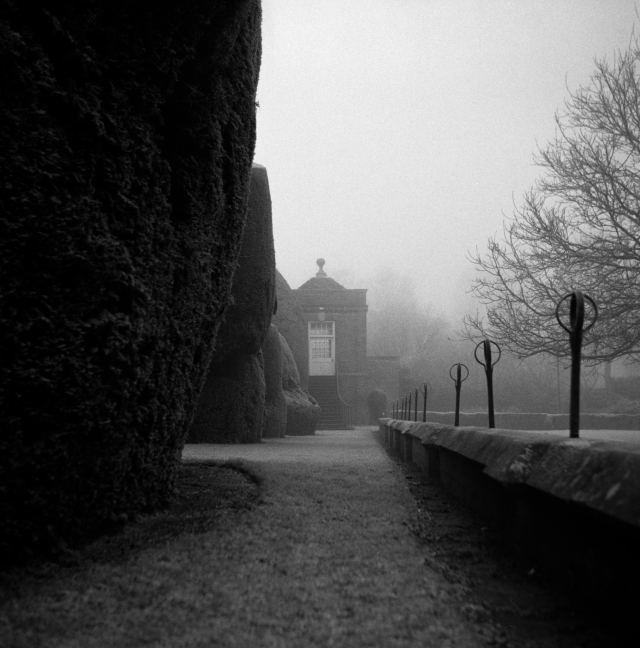 The Quiet Place, 01 (Flickr).jpg